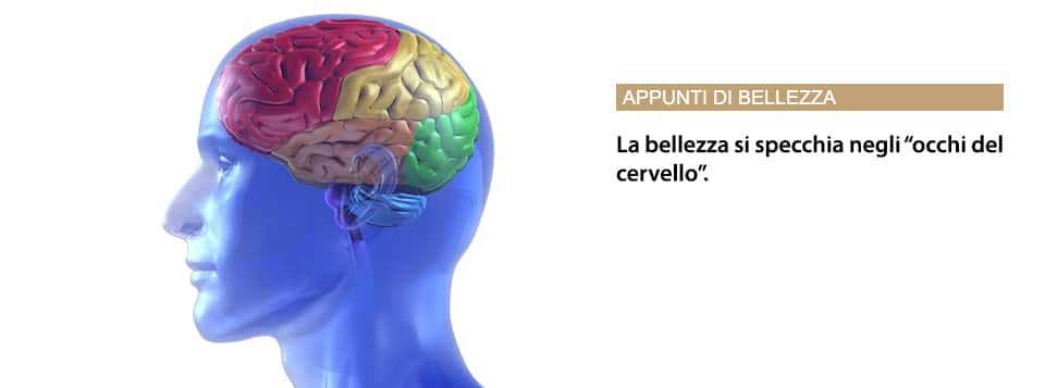 """La Bellezza Si Specchia Negli """"occhi Del Cervello""""."""